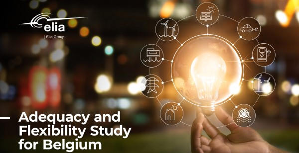Adequacy and flexibility study for Belgium